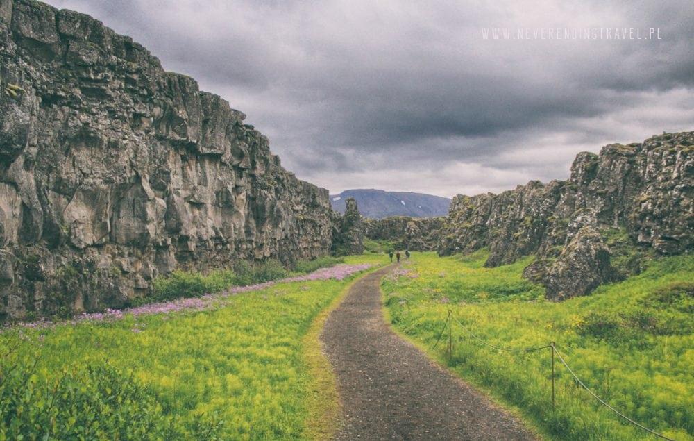 w Parku Narodowym Þingvellir na Islandii