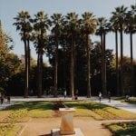 lista nieznanych miejsc w Atenach drzewa-w-National-Garden-Ateny-neverendingtravel.pl