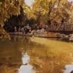 lista nieznanych miejsc w Atenach staw-w-National-Garden-Ateny-neverendingtravel.pl