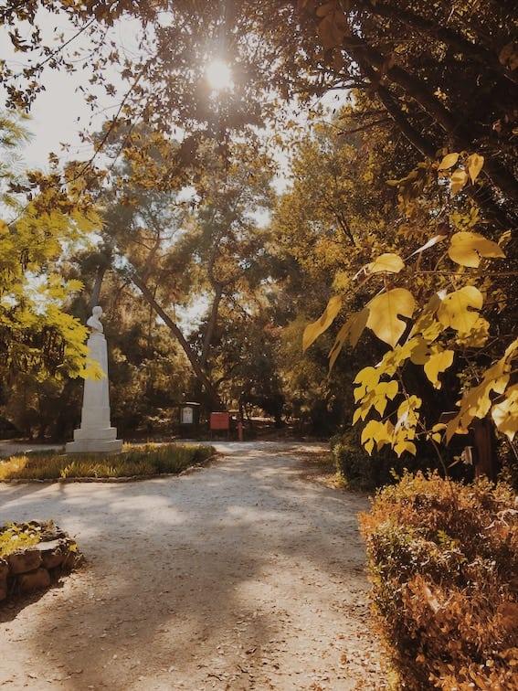 lista nieznanych miejsc w Atenach widok-w-National-Garden-Ateny-neverendingtravel.pl