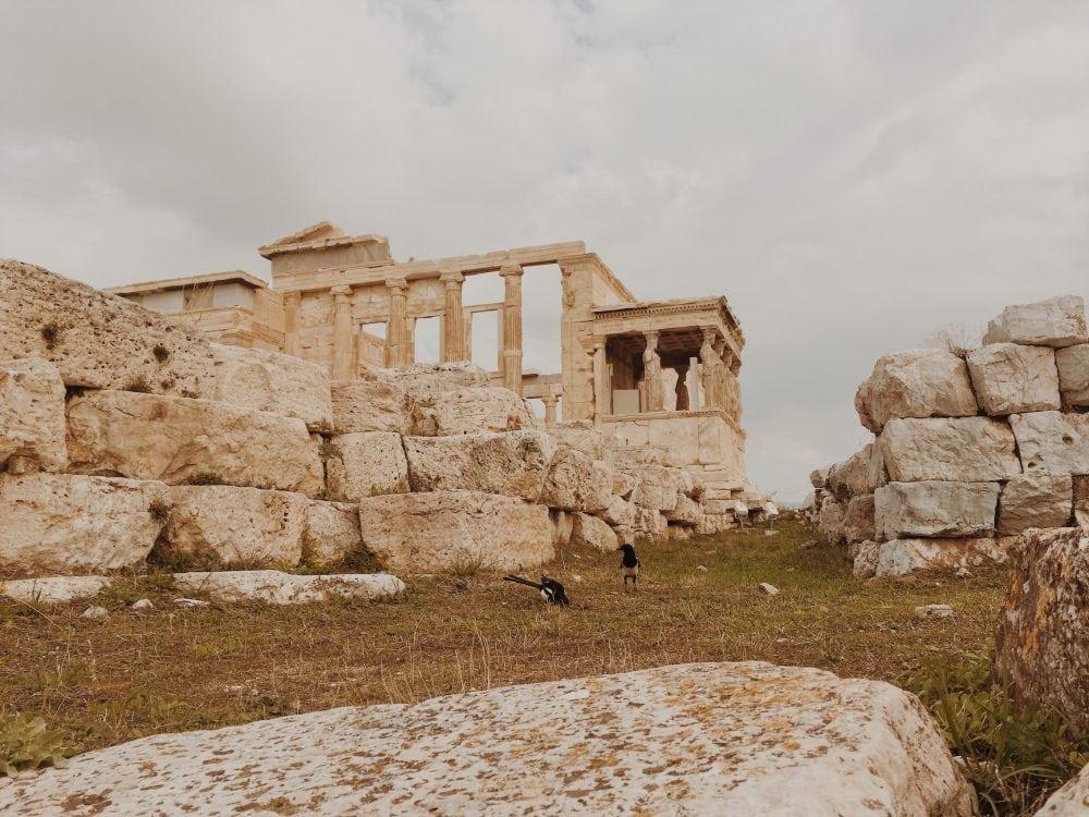 akropol-ateny-neverendingtravel.pl Akropol w listopadzie, ruiny budowli, na pierwszym planie sroki na trawie, w tle Erchtejon i rzeźby kobiet