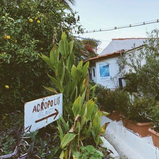 na-Akropol tabliczka z napisem acropolis i strzałką wskazującą kierunek, tabliczka jest na tle zieleni i białego budynku w tle rośnie cytrynowe drzewo