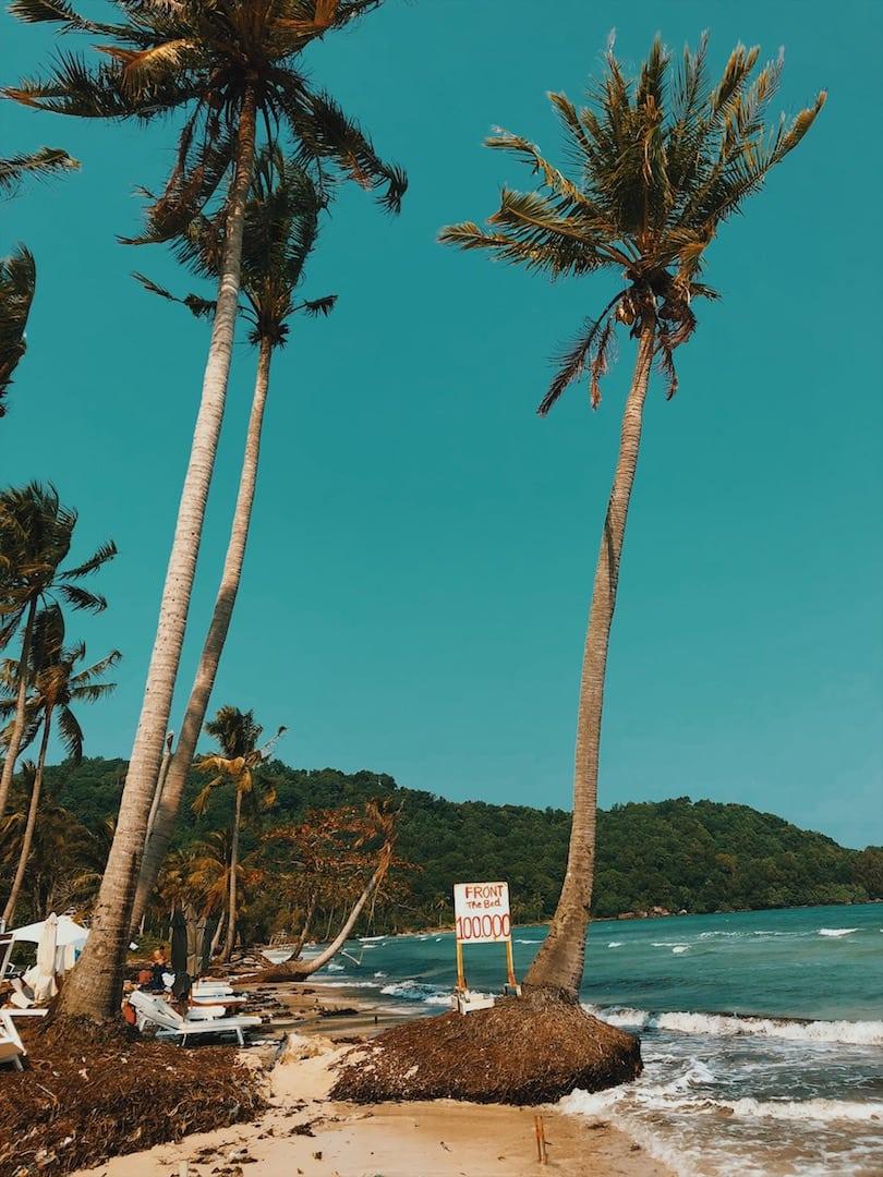 sao beach plaża palmy drzewa wyspa phu quoc wietnam neverendingtravel.pl