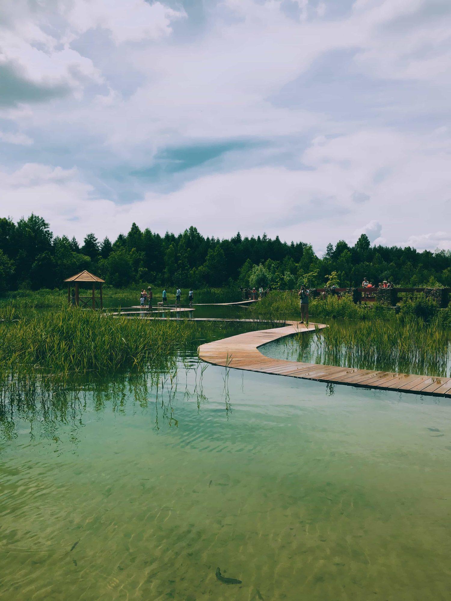 Park Gródek Jaworzno – Zbiornik Wydra kładka neverendingtravel