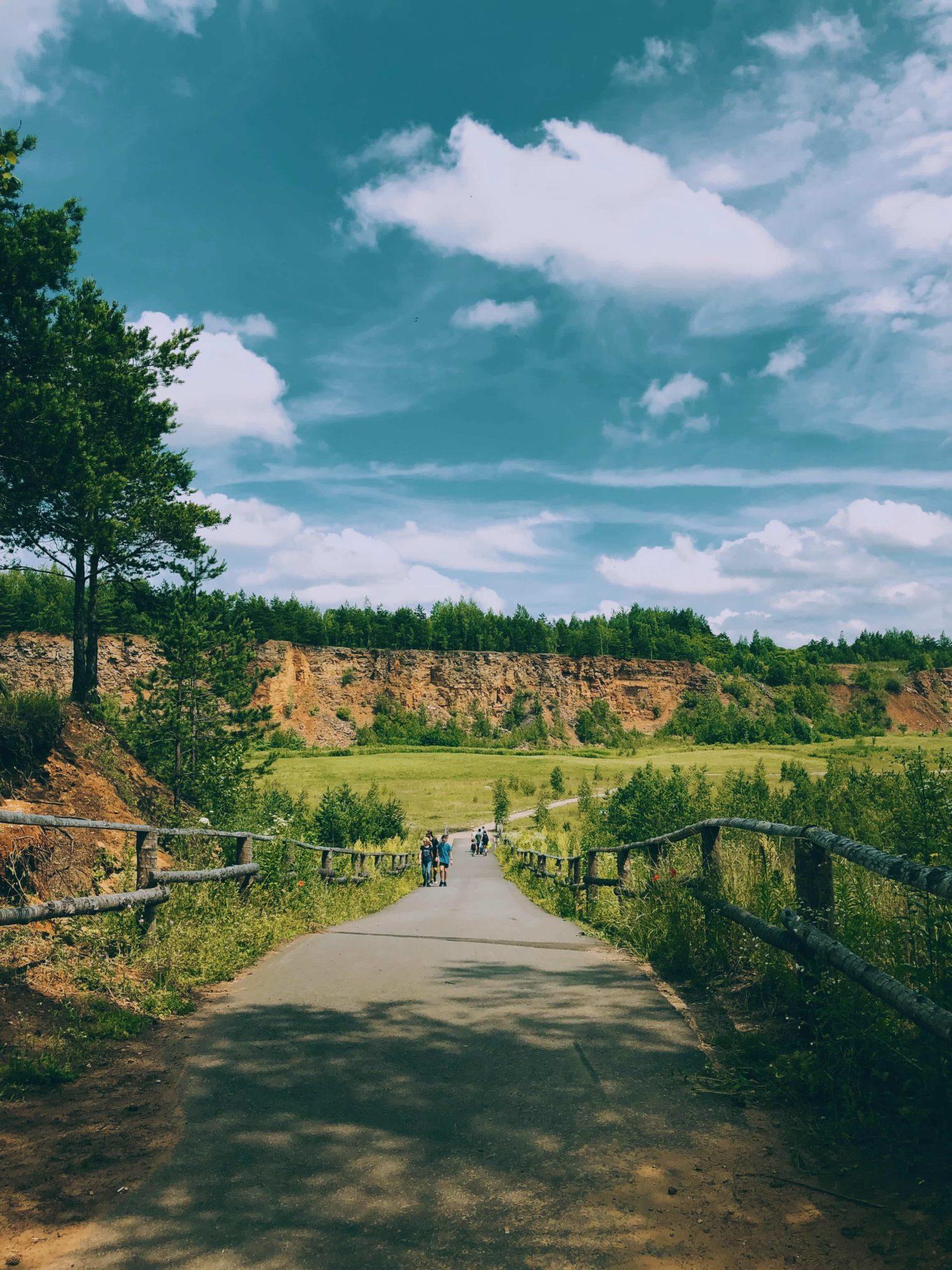 Park Gródek Jaworzno – Zbiornik Wydra park z łąką kwietną arboretum koło Katowic