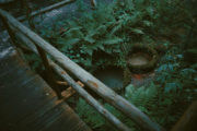 mofeta w tyliczu, polska ciekawostki, małopolska na weekend, poznaj polske, okolice Krynicy, co na weekend visitpoland, przyrodnicze ciekawostki