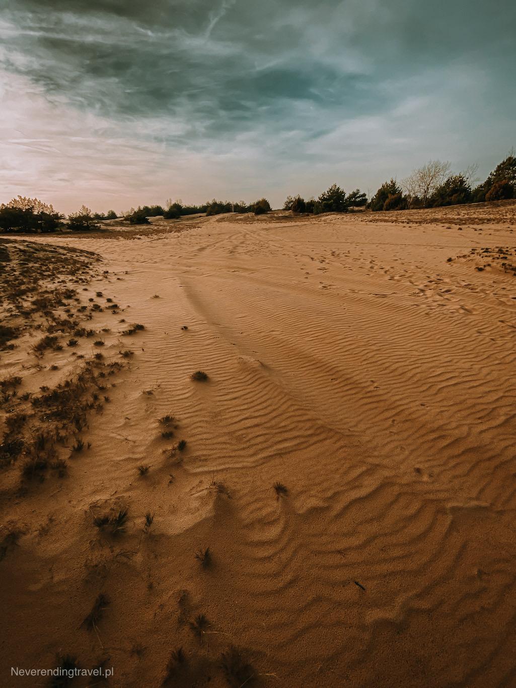 wydmy, kampinoska pustynia, poligon cybulice, kampinos, grochalskie piachy, ciekawe miejsca w kampinosie, kampinoski park narodowy, ciekawe miejsca warszawa, pustynia w okolicy warszawy, polska ciekawe miejsca,