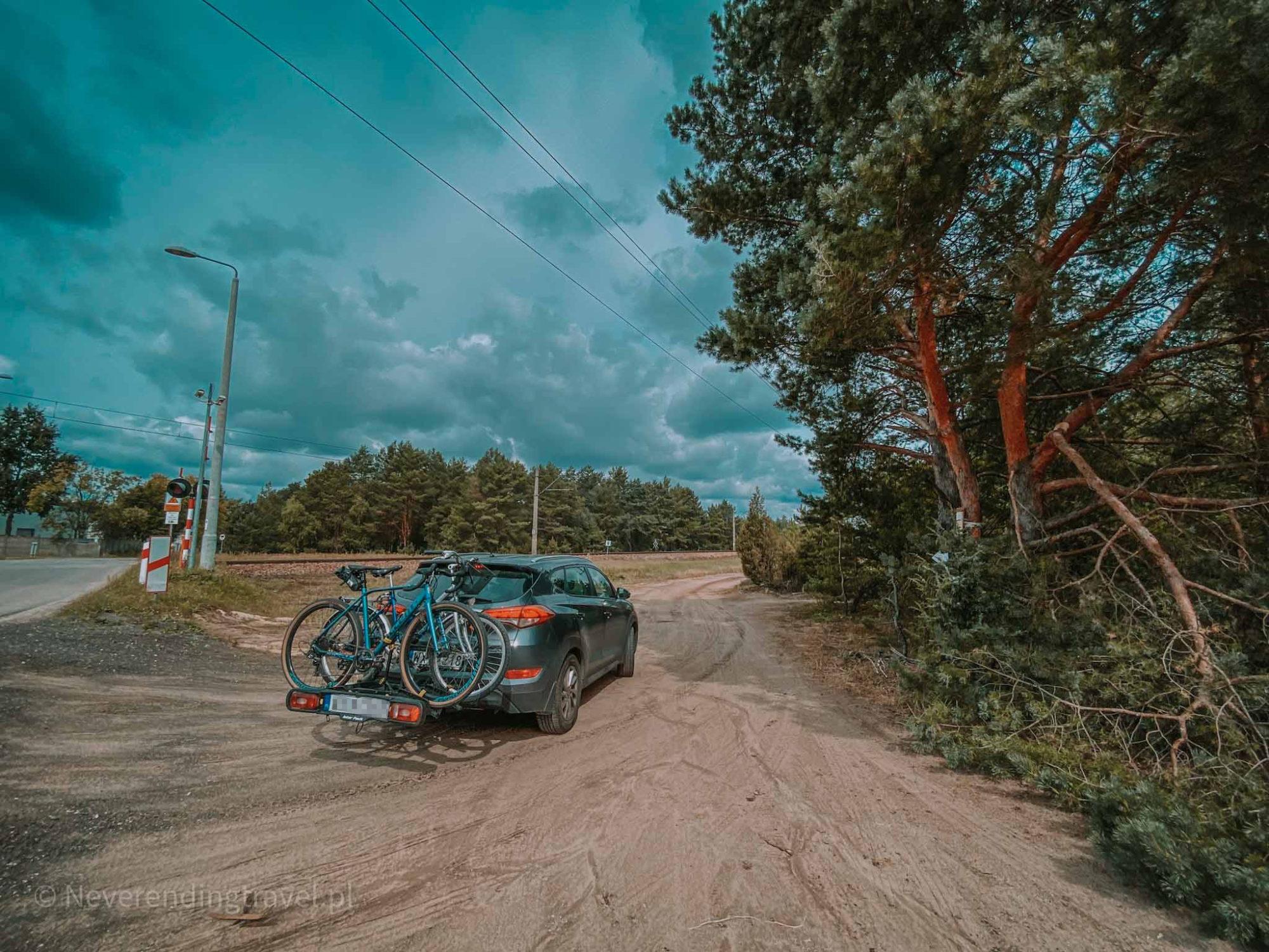 wrzosowisko mostówka pod Warszawą, parking. największe w Polsce, plener, sesja, na weekend z Warszawy, wrzosy, drzewa, wycieczka