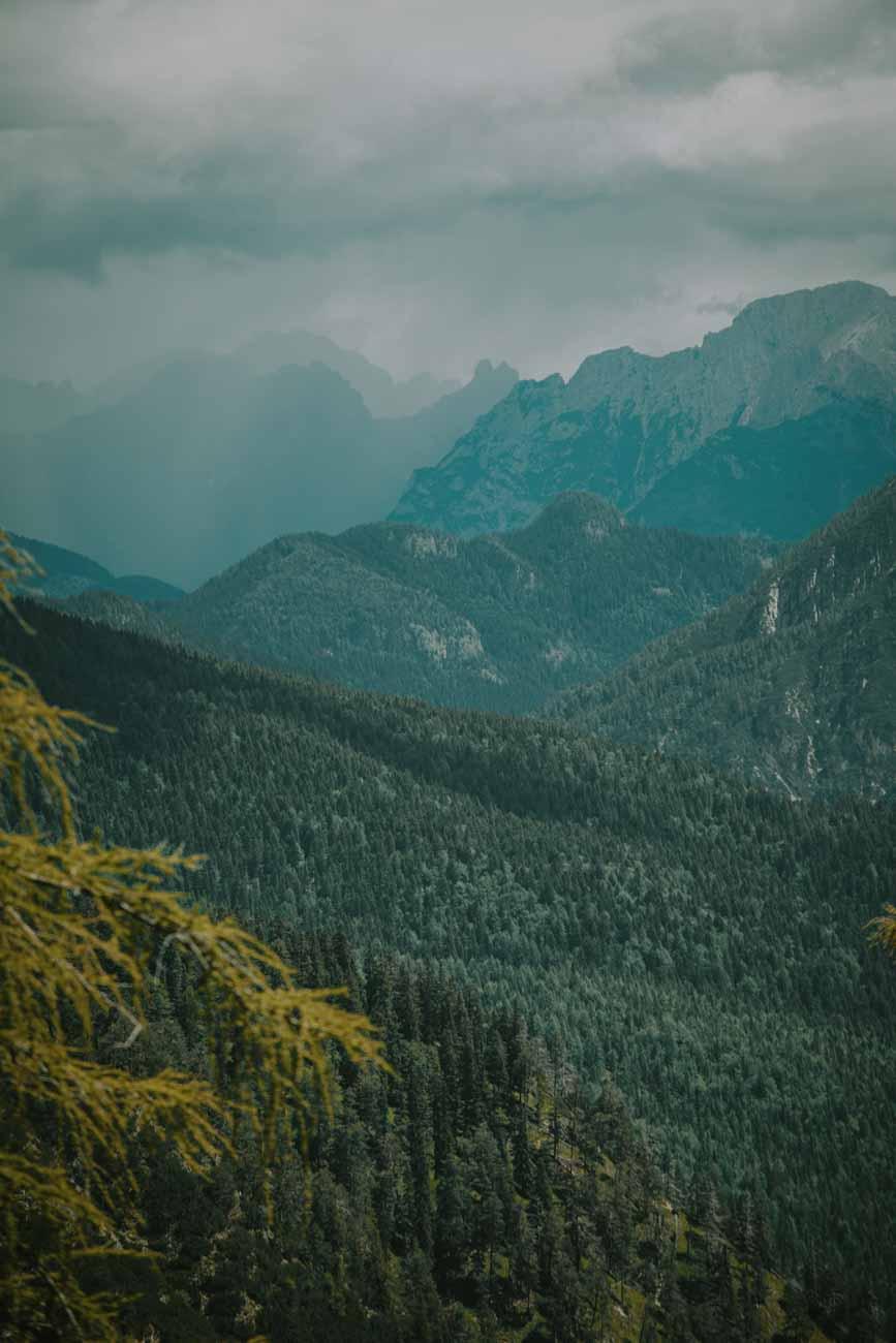 Dolomity we mgle, drzewa, góry, Alpy
