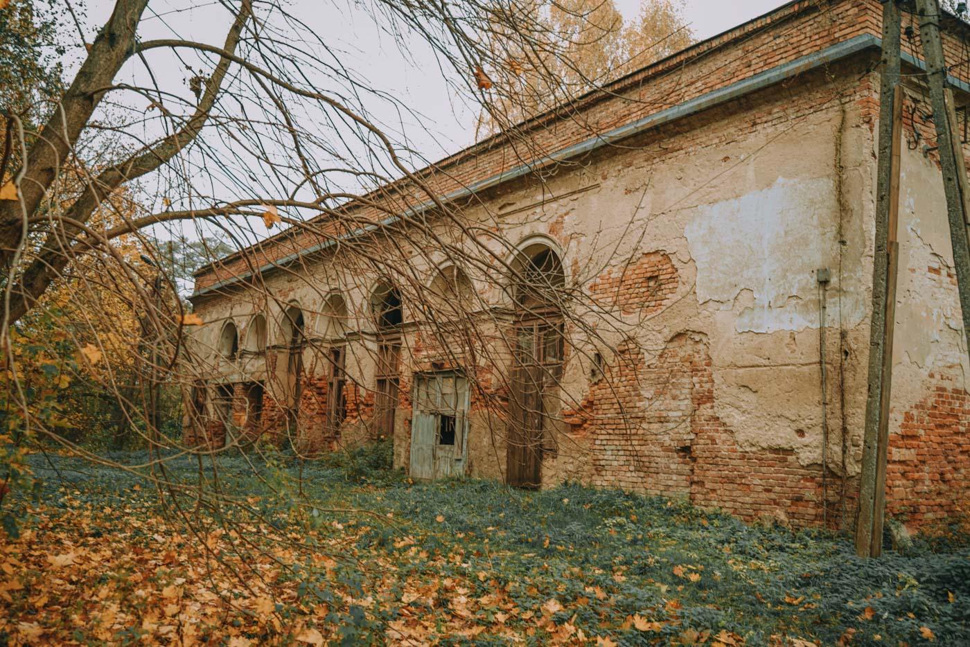 pałac w falentach stawy raszyńskie ciekawe miejsce pod warszawą ostoja ptaków raj ornitologów