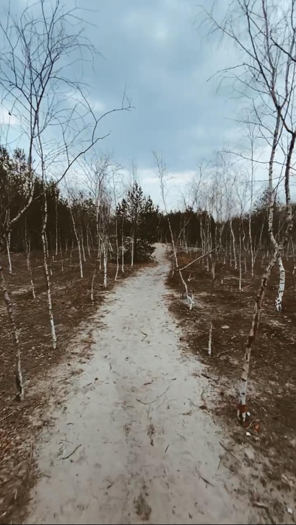 góry chobockie brzozowy lasek na jeden dzień z warszawy wypad na weekend ciekawe miejsce na mazowszu nietypowe